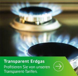 Transparent_Erdgas_Gasplatte